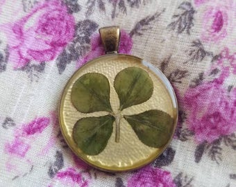 Real Four Leaf Clover Pendant #24