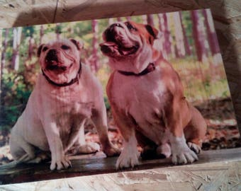 Your image on wood, unique and individual. The perfect gift for any occasion. Everlasting and simply Beautiful