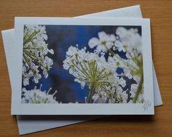 "Fontenil Flowers - Blank greetings card - 5""x7"" / 12.5x17.5cm"