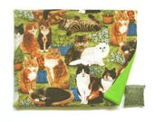 Catnip Mat plus Catnip  Cats and Flowers Refillable Reversible