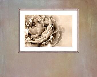 Printable Wall Art, Sepia Peony Photograph, Large Art Poster, Peony Flower Print, Neutral Wall Art