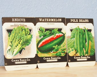 Authentic Old Seed Packets NOS Watermelon Endive Pole Beans 1930s 1940s Card Seed Co. Freedonia N.Y.