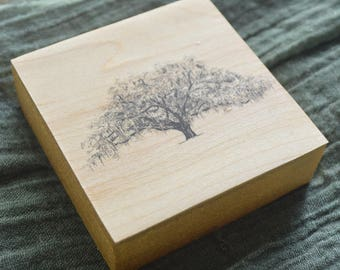 Tree Art Wood Block - The Candler Oak - Pen and Ink Drawing Print by Heather L. Young