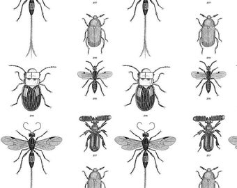Bugs Fabric - Beetles, Weevils And Mayflies By Flyingfish - Entomology Black and White Vintage Cotton Fabric By The Yard With Spoonflower