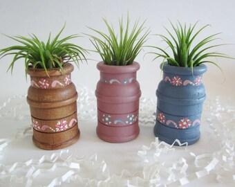 Air plant planter,  Cubicle decor, hand painted wood air plant holder,  Desk decor, kitchen decor, home decor
