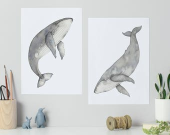 Humpback whale watercolour paintings, whale art, set of two Watercolour whales, whale prints, watercolour prints