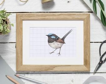 Fairy wren print - bird print - bird watercolour print - wren illustration - small print - watercolour bird - Blue wren