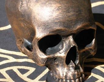 Brushed Gold Life-Like Skull~Altar or Home Decor