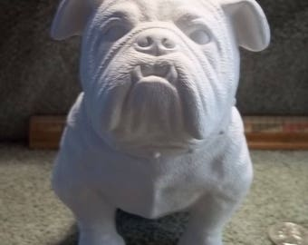 English Bulldog with a collar in Ceramic Bisque - Ready to Paint Bull Dog Bulldogs