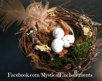"Spring Birds nest with eggs- 3"""