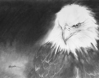 Eye Spy - Bald Eagle Print Signed by artist