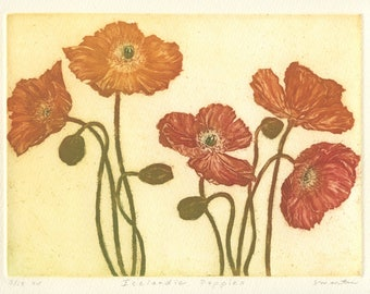 Iceland Poppies, Original Aquatint Etching