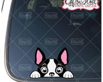 Peek-A-Boo Boston Terrier Vinyl Decal Sticker