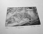 Cat napping drypoint