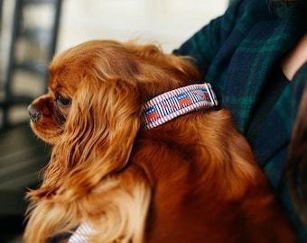 Preppy Seersucker Repuplican Dog Collar, Republican Dog Collar, Conservative Dog Collar, Conservative Elephant Dog Collar, GOP