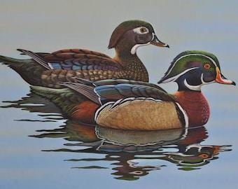 Wood Duck Print, Wildlife Art, Wood Duck Art, Animal Wildlife, Wall Decor, Cabin Decor, Ducks, Waterfowl, Gifts, Birds, Home Decor