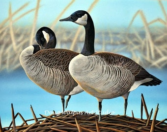 Canada Geese Original Painting by Doug Walpus, Acrylic, Waterfowl, Birds, Wall Decor, Office Decor, Gifs, Cabin Decor, Art and Collectibles