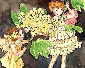 ACEO Limited Edition 1/25- Guelder rose flower fairies inspired by Cicely Mary Barker, Art print of original watercolor, Wild flowers