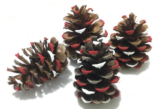 Tree Decorations Charity Fundraiser Holiday Christmas Hand Painted Aged Ponderosa Pine Cone Ornament Natural ECO Friendly Home Decor Gift Se