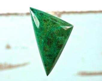 Parrot Wing Chrysocolla gemstone freeform cabochon 39x25mm