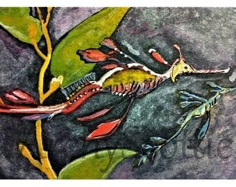 Sea Dragon Fish Fine Art print #450