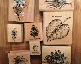 Fantastic Foliage Stampin Up retired stamp set