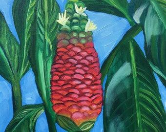 Pine Cone Ginger, 11x14 original oil painting
