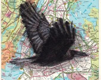 Custom Bird Drawing Crow #3 on Map
