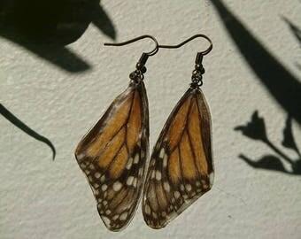 Monarch butterfly wing earrings.