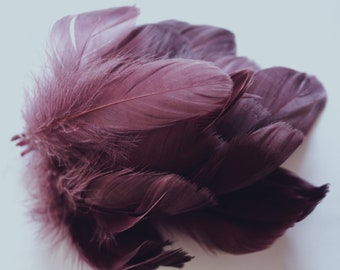 Purple Goose Coquille Feathers. 2 Inches Strip Jam Packed.