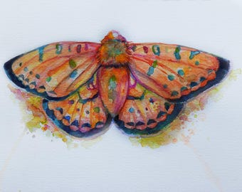 Dark Green Fritillary Butterfly Psychedelic Bright Watercolor painting