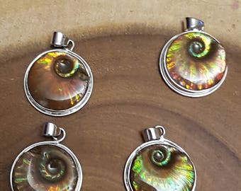 Madagascan Ammonite Pendant