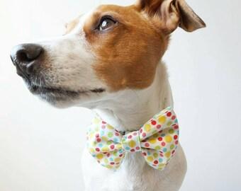 Bow tie/Pop happy dot bow tie