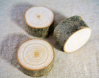 3 slices of wood magnets