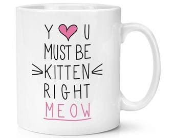 You Must Be Kitten Right Meow 10oz Mug Cup