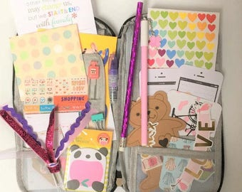 Filled Planner Case, Pencil, Pen, Stickers, Washi,