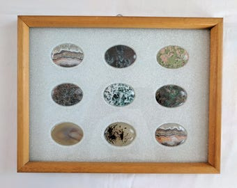 Collection of 9 Jasper stone cabochons, framed & under glass
