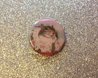 Fancy Squirrel 1.25 inch Pinback Button