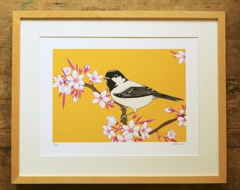 Cherry blossom & coal tit limited edition A3 print