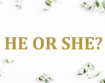 HE OR SHE? (C5) - glitter banner / baby shower banner / gender reveal party / decoration / sign / backdrop
