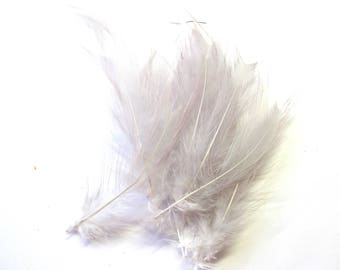 20 FEATHERS ROOSTER 10/12 CM CLEAR LILAC COLLAR DOWN