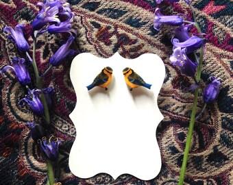 Blue Tit Bird Fine Detail Sterling Silver 925 Stud Earrings