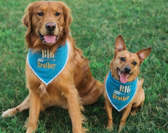 Big Brother or Sis Dog Bandana.  Chambray denim neckwear with a rustic style and arrow.  Pregnancy announcements include pets. Name on back