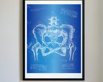 Vintage Anatomical Pelvis Sketch Da Vinci Print - Anatomy Pelvis Print, Anatomical Prints, Vintage Pelvis, Halloween Decor (#A9)