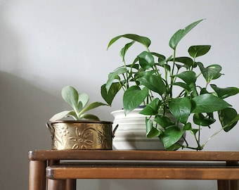 Brass Planter Brass Pot Gold Planter Small Planter Mid Century Modern Planter Flower Planter Antique Planter Boho Planter Brass Container