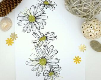 Daisies Print, White Flower Print, April Birthday, Feminine, Friendship Gift, Nature, Gifts for Women, Botanical Prints, Wall Art