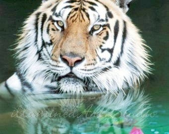 Tiger With Lotus Card