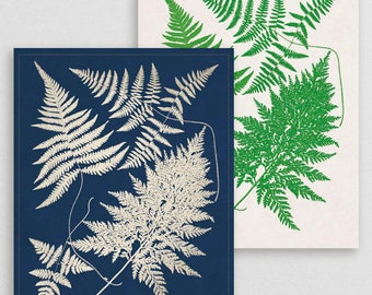 Classic Fern XVIII- Botanical Decor- Botanical Gifts- Prints for Decor- Botanical Art- Ferns- Nature -Vintage -Vintage Prints -Vintage Art