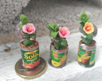 Hibiscus in a tin of canned