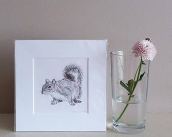 squirrel mini print | miniature squirrel print | mini print | squirrel illustration | nursery print | animal print